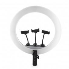 Кольцевая лампа 45 см LZ18-450CW Remote BrownBox (с 3 держ.)