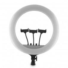 Кольцевая лампа 45 см RL-18 ll LED BlueBox (с 3 держ.)